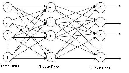 A Multilayer Network